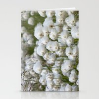 Cotton Grass Stationery Cards