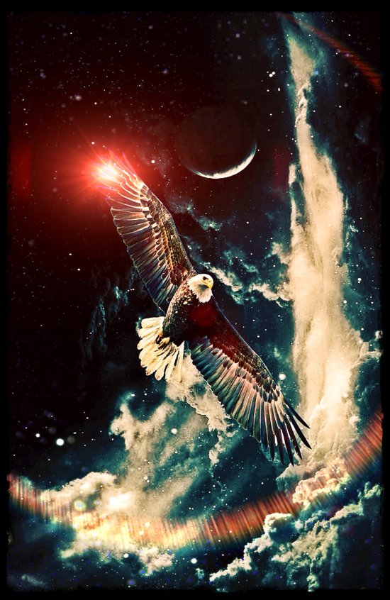 Fly like an eagle - for iphone Art Print