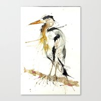 Mr Heron Canvas Print