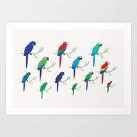 Macaws 2 Art Print