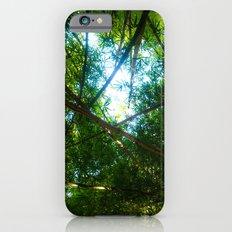 Bamboo crossing iPhone 6 Slim Case