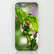 Ladybugs Earn Their Spots Slim Case iPhone 6s