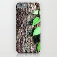 Wrinkles in Nature iPhone 6 Slim Case