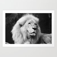 LIONS IN VEGAS Art Print