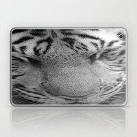 Le Tigre Pendant Sa Sieste Laptop & iPad Skin