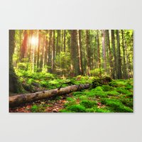 Back to Green Canvas Print