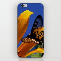 Transparent Butterfly iPhone & iPod Skin