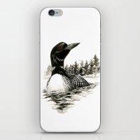 North Shore Loon iPhone & iPod Skin