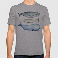 S'whale Mens Fitted Tee Athletic Grey SMALL