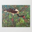 South African Bird Canvas Print