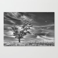 Ethereal Skies Canvas Print