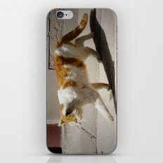Mao iPhone & iPod Skin