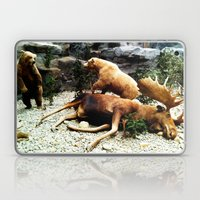 Grizzly Fight Laptop & iPad Skin