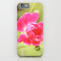 iPhone & iPod Case featuring New Beginnings by Beth - Paper Angels Photography