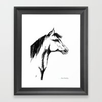 'Another Horse Profile' … Framed Art Print