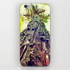BC iPhone & iPod Skin