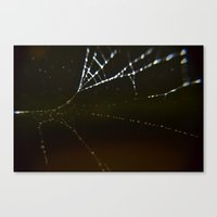 Watery Web Canvas Print