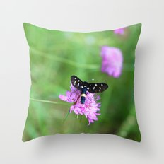 birds, bees and butterflys Throw Pillow
