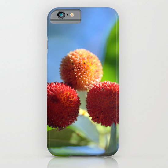 Strawberry tree fruits 8697b iPhone & iPod Case