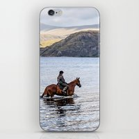 Horse at Airds Bay Loch Etive iPhone & iPod Skin