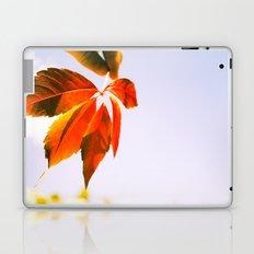 Wind Blown Laptop & iPad Skin