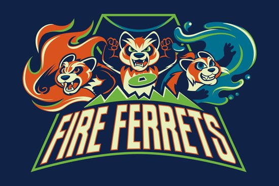 Fire Ferrets Canvas Print