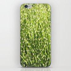 Fresh green iPhone & iPod Skin