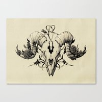 The Skull Drawing Canvas Print