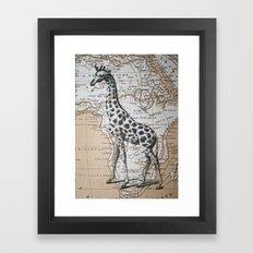 African Giraffe Framed Art Print