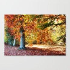 Autumn Shades Canvas Print