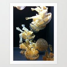 Mushrooms Of The Sea Art Print