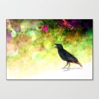 Little Bird  Canvas Print