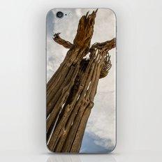 Saguaro Skeleton iPhone & iPod Skin