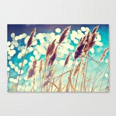 See Spot Run Canvas Print