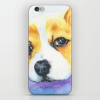 Corgi Love iPhone & iPod Skin