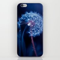 Light In The Sky iPhone & iPod Skin