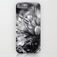 Sunlit Crocus in Black and White iPhone 6 Slim Case