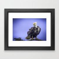 Eagle in Breeze Framed Art Print
