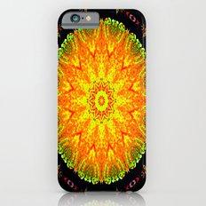 Citrus Slice Kaleidoscope iPhone 6 Slim Case