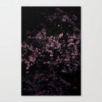 Flash Blossom Canvas Print