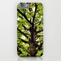 Leaves and Branches iPhone 6 Slim Case