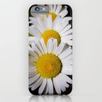 Daisy Cascade iPhone 6 Slim Case