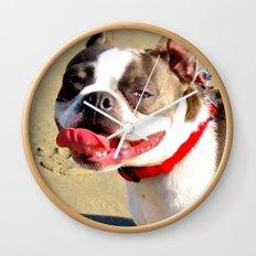 Portrait of a Boston Terrier Wall Clock
