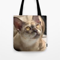 Study of a Cat Tote Bag