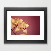 Yellow Orchids No. 1 Framed Art Print