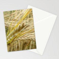 Field #1 Stationery Cards