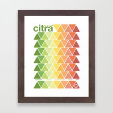 citra single hop Framed Art Print