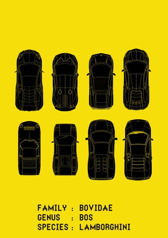 Lamborghini Family Art Print