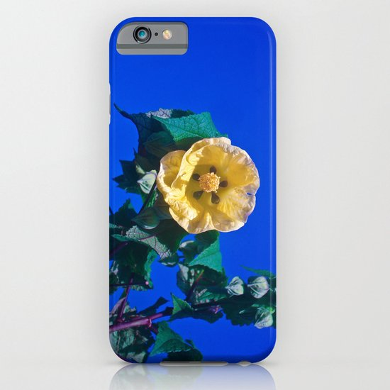 BLUE, YELLOW AND GREEN iPhone & iPod Case