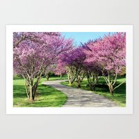 Drive-way Art Print